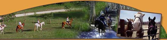 Come Ride Our Horses at Smoky Mountain Riding Stables in Gatlinburg, Tennessee
